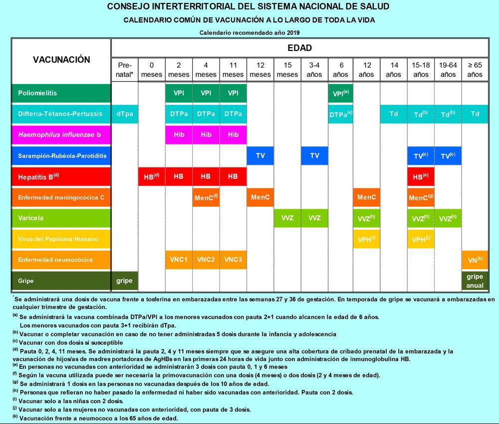 calendario vacunacion 2019