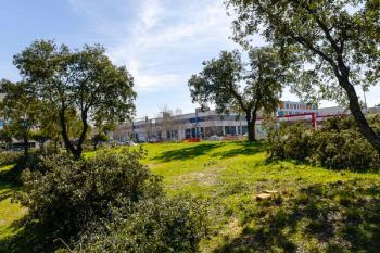 La guía definitiva sobre los 59 parques del municipio