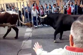 El Ayuntamiento de Fuenlabrada asegura que no se ha vulnerado ninguno de los artículos mencionados por Equo Fuenlabrada