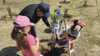 Leganés está plantando más de 700 árboles y arbustos