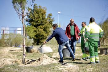 El proyecto contempla la plantación de especies autóctonas con el fin de lograr la integración paisajística