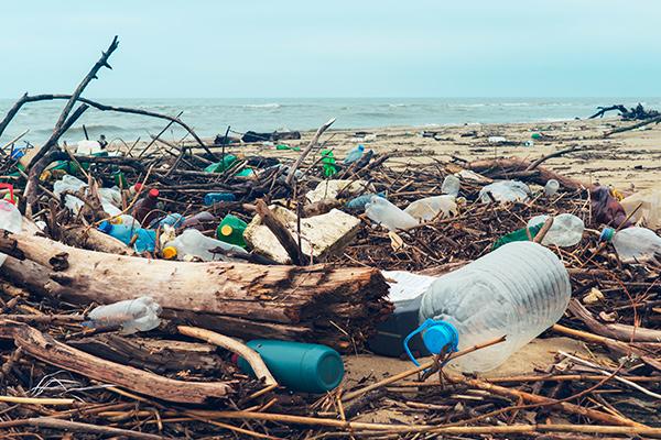 ¿Cómo podemos vivir sin plástico, o al menos, reducir su consumo?