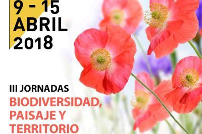 Lee toda la noticia 'Alcalá apuesta por las prácticas responsables para el desherbado'