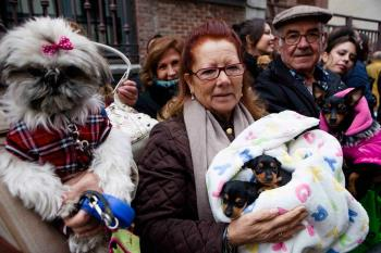 El próximo sábado 18 de enero, a las 13:00 horas, los vecinos podrán acercar a sus animales al patio de la iglesia