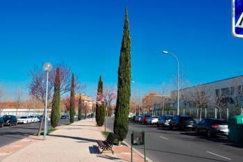 Las obras para la renovación de las luminarias en la avenida arrancan a principios de marzo
