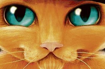 El gato más conocido de todos los tiempos llega al auditorio villaodonense, el 7 de abril