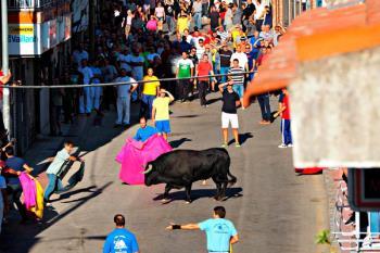 Alberto Pérez Boix nos remite su artículo de opinión sobre el uso de los toros en las fiestas de Fuenlabrada