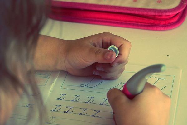 Ciudadanos, vigilante para que se cumpla el plan de reformas en los colegios