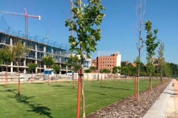 La obra, ubicada en el distrito de Usera, es una pieza fundamental para la recuperación urbana del Manzanares