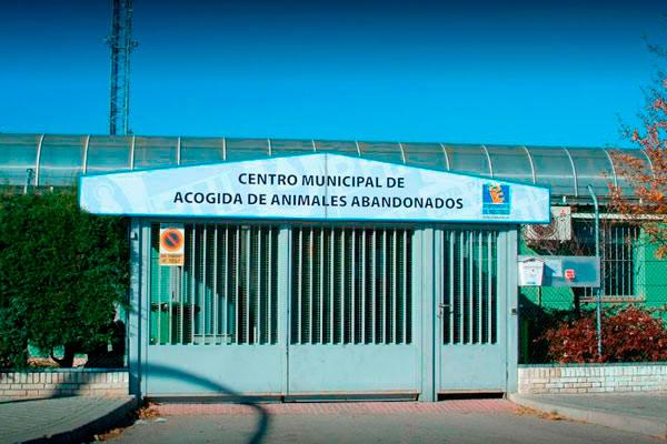 Emplazado en el Polígono de Las Nieves, cuadruplicará la extensión del actual