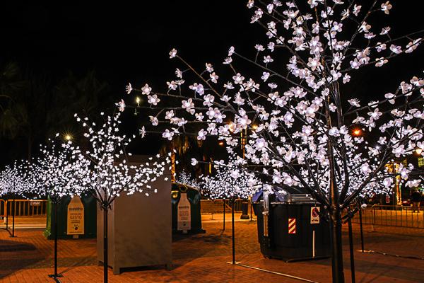 30 árboles iluminan cada noche en la Plaza España un punto de reciclaje