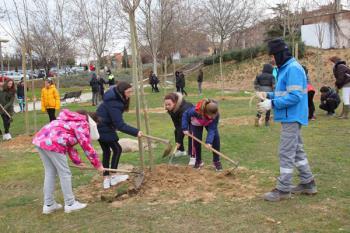 El Ayuntamiento de Alcobendas desarrolla un proyecto en el que más de 4.000 alumnos plantarán árboles