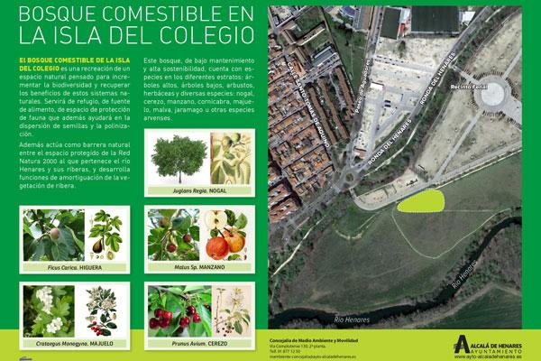 Naturalización y soluciones basadas en la naturaleza del Proyecto Europeo Nature 4 Cities