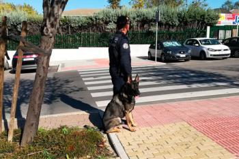 La alcaldesa ha pedido una reunión con la Delegada de Seguridad de la Comunidad de Madrid