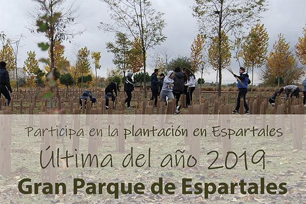 Será la última plantación del año
