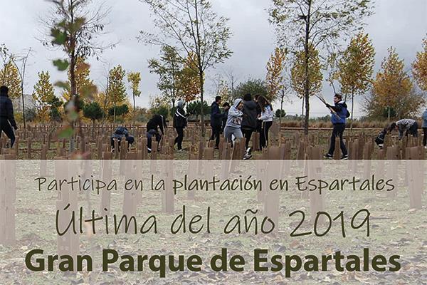 El Gran Parque de Espartales acoge este domingo una nueva jornada de voluntariado ambiental