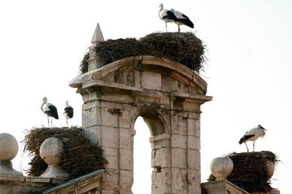 El ganador conseguirá una noche de alojamiento en uno de los Paradores de las Ciudades Patrimonio