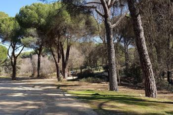 El grupo propone que la gestión de los espacios naturales sea asumida por la concejalía de Medio Ambiente