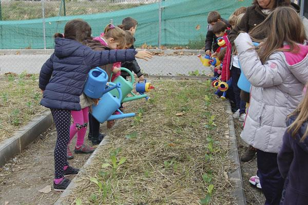 El colegio Teresa de Calcuta recibe un premio de Ecoescuelas