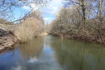 Los productos, que han invadido las orillas del río, proceden de la depuradora de Coslada