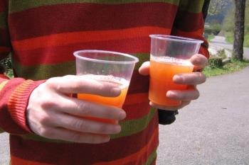 En 2019, se superaron las 900 infracciones por consumir bebidas alcohólicas en la vía pública