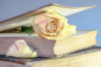 La autora Carmen Martínez Seco presenta su novela en Majadahonda el 4 de diciembre