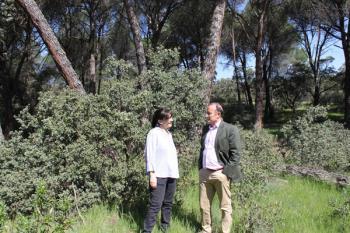 La adquisición total supondría una inversión superior a los 12 millones de euros para el Ayuntamiento
