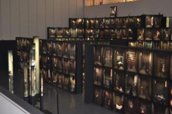 La exposición 365º recoge fotografías para cada día del año tomadas en los últimos ocho años
