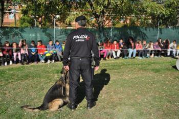 Los protagonistas de las exhibiciones son los perros de la unidad canina de la Policía de Móstoles