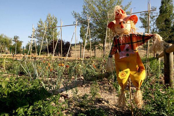 Inicio del acondicionamiento de 80 huertos urbanos en Valdelasfuentes