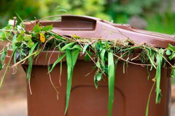 Con esta medida se pretende fomentar el reciclaje de residuos orgánicos