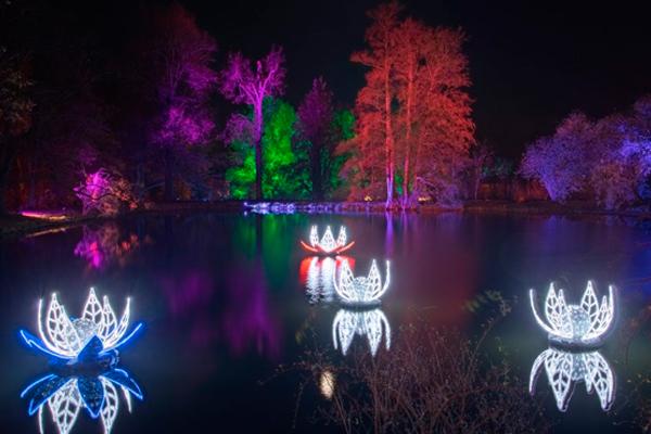 El Real Jardín Botánico de Madrid, se convierte estas navidades en el 'Christmas Garden Madrid'