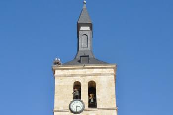 Una pareja anida en la torre de la iglesia San Juan Evangelista