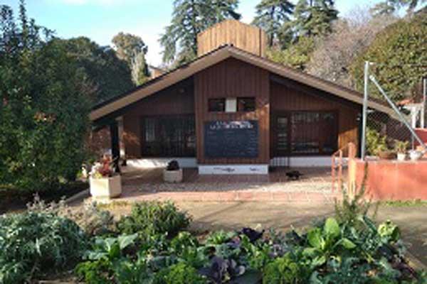 El proyecto engloba un huerto, un espacio que se ha erigido como un núcleo de participación, educación y cohesión social