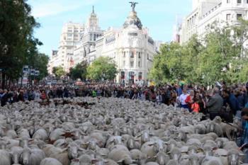 Varias manifestaciones, carreras, la Feria Outlet en Madrid y el Día de la Trashumancia, colapsarán el tráfico este fin de semana en la capital