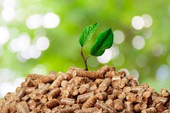 El municipio contará con redes de calor provenientes de biomasa y energía solar