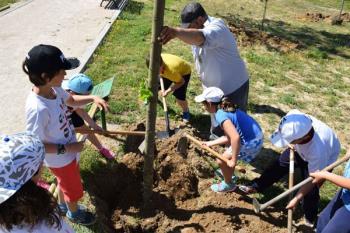 A través de esta acción se pretende concienciar sobre la importancia de árboles y plantas en el medio ambiente