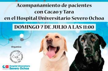 Tara y Cacao son los perros de la Asociación Canina de Leganés, que realizarán visitas a los ancianos ingresados que reciben poca compañía
