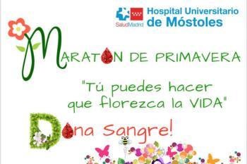 Estos maratones se realizan en casi todos los hospitales públicos de la Comunidad de Madrid