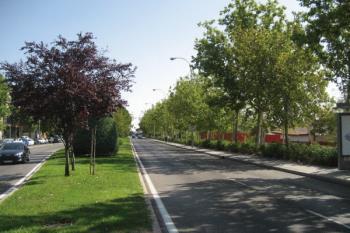 Las calles Trespaderne, Garganchón, Pradoluengo y Fuentenebro acogerán este nuevo espacio verde