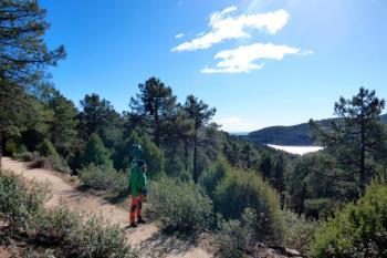 Ya no será necesario calzarte las botas de montaña, el proyecto pionero de Google digitaliza 137 kilómetros de pistas forestales de Madrid