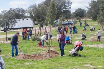 Boadilla del Monte promueve una nueva plantación de árboles en homenaje a nuestros bebés