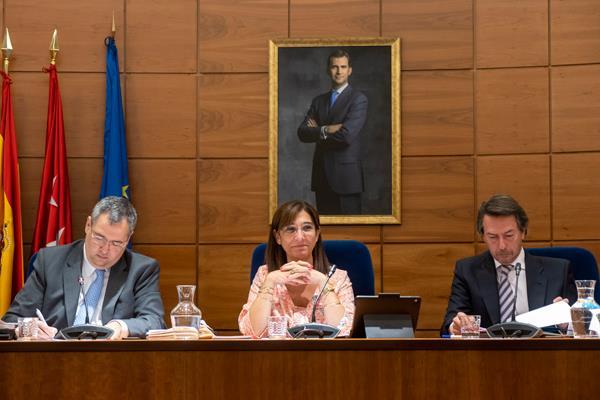 El Pleno de Pozuelo aprueba la bajada del IBI
