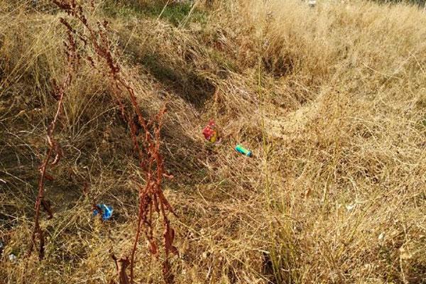 El trabajo consiste en dejar la zona libre de maleza, hierba o vegetación