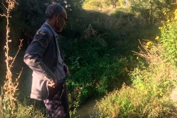 Ciudadanos Pozuelo pregunta al gobierno local sobre las medidas para frenar este problema