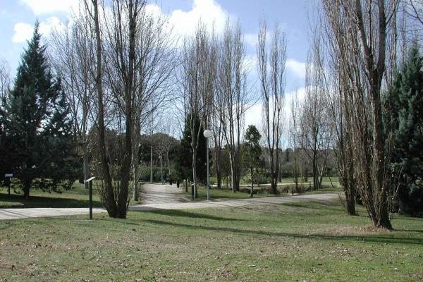 Se reabren los parques de Móstoles tras desactivarse los avisos por fuertes vientos