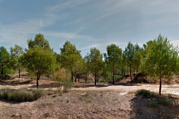 Se recuperarán dos espacios naturales Los Cerros de Alcalá y el Parque de El Humedal en Coslada