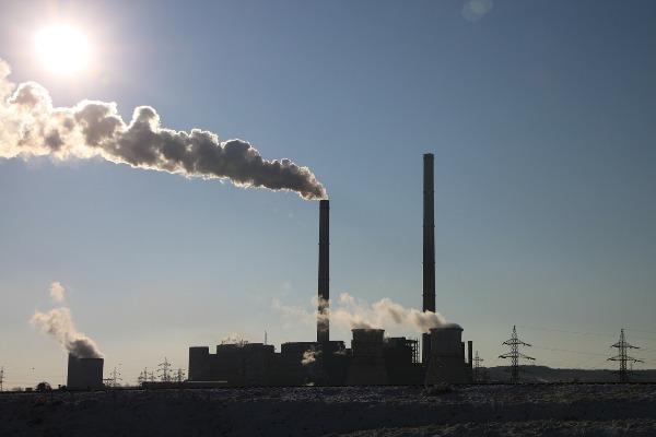 Según una encuesta de Lean&Green, su objetivo es reducir sus emisiones de gases de efecto invernadero a la mitad