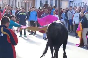 Las toros continúan hoy con la corrida mixta que tendrá lugar esta tarde con Manuel Díaz el Cordobés, Fran Rivera Paquirri y el novillero Local Sergio Montero