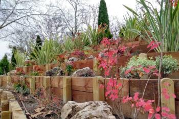 Esta primavera tendrá más color gracias a la combinación de plantas en estas zonas